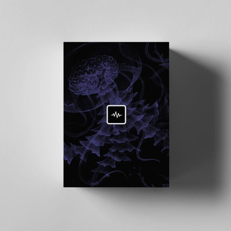 Nick Mira – Brainstorm Loop Kit