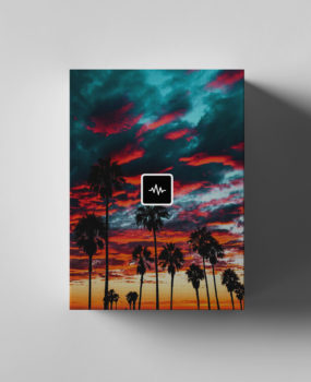 The Martianz – Palm Ave (Loop Kit)